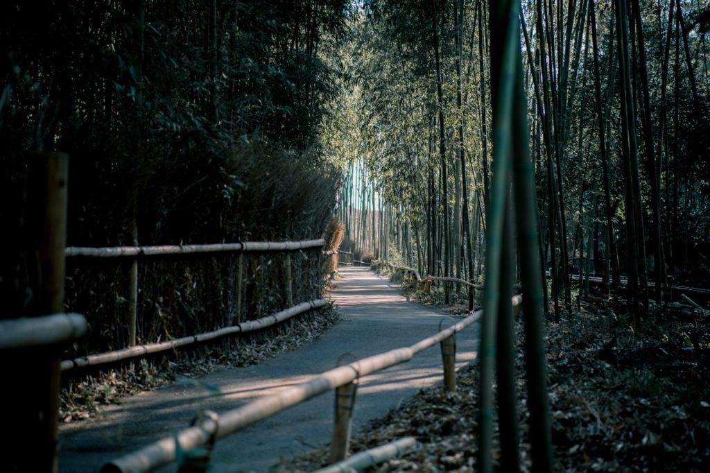 Bamboo home storage